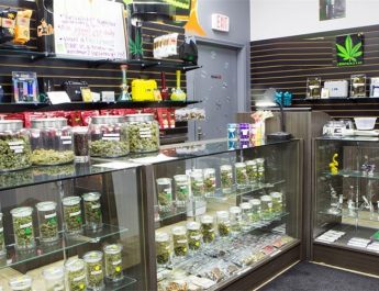 Significance of Massachusetts dispensary setup