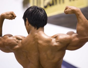 Steroids and Numerous Muscle Building Benefits It Provides